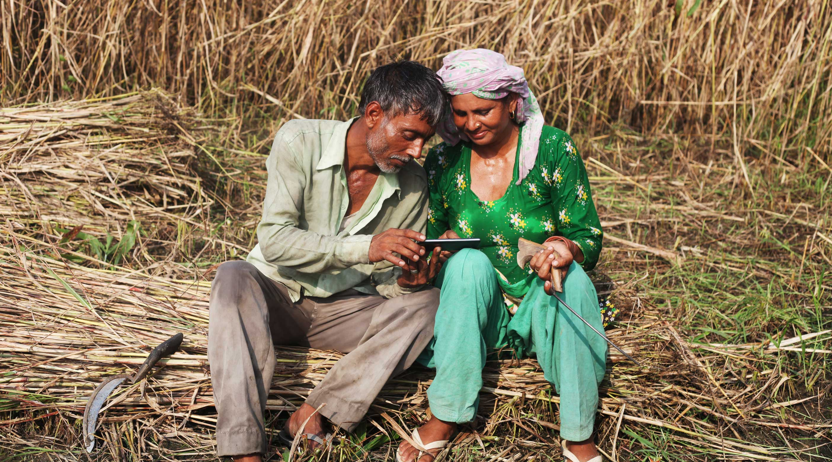 iStock-617772978-XLarge---Indian-man-and-woman-field-using-smartphone-